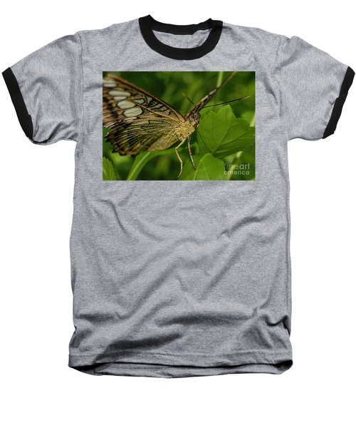 Baseball T-Shirt featuring the photograph Butterfly 2 by Olga Hamilton
