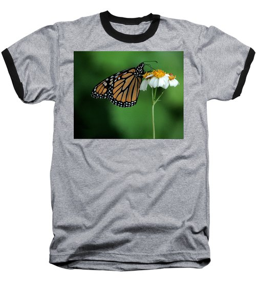 Baseball T-Shirt featuring the photograph Butterfly 3 by Leticia Latocki
