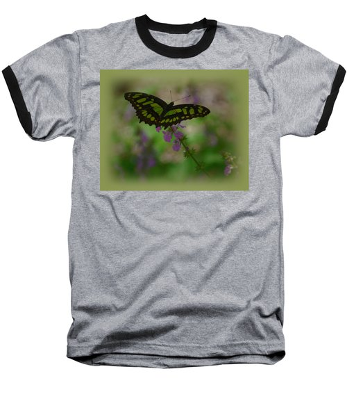 Baseball T-Shirt featuring the photograph Butterfly 4 by Leticia Latocki