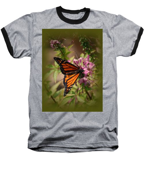 Baseball T-Shirt featuring the photograph Butterfly 5 by Leticia Latocki