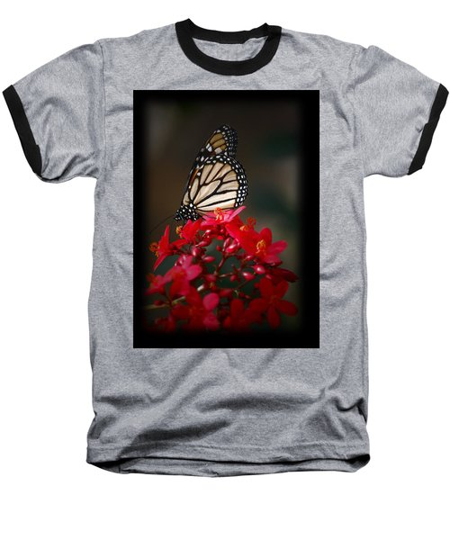 Baseball T-Shirt featuring the photograph Butterfly 6 by Leticia Latocki