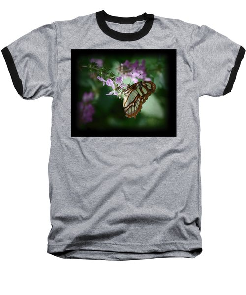 Baseball T-Shirt featuring the photograph Butterfly 7 by Leticia Latocki
