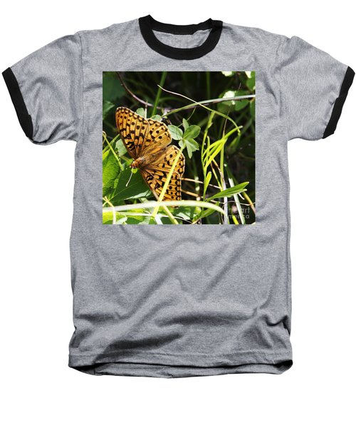 Baseball T-Shirt featuring the photograph Butterfly At Signal Mountain by Belinda Greb