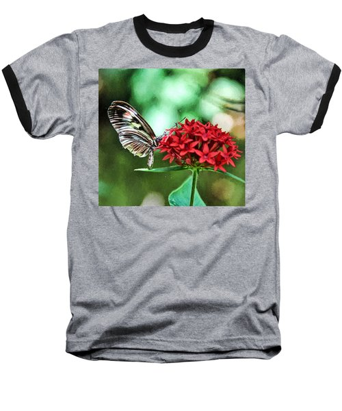 Butterfly Baseball T-Shirt by Bill Howard