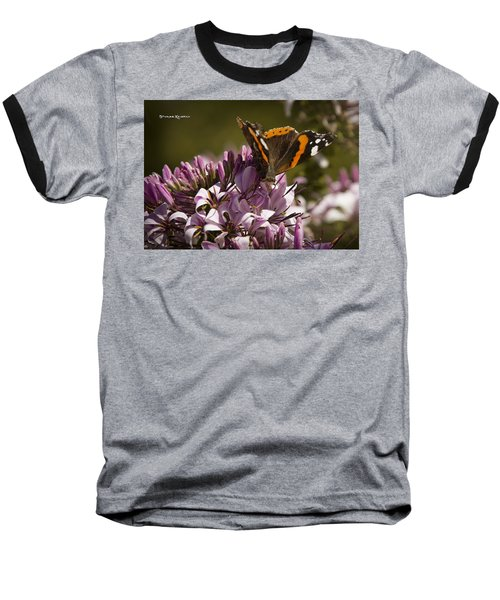 Baseball T-Shirt featuring the photograph Butterfly Close Up by Stwayne Keubrick