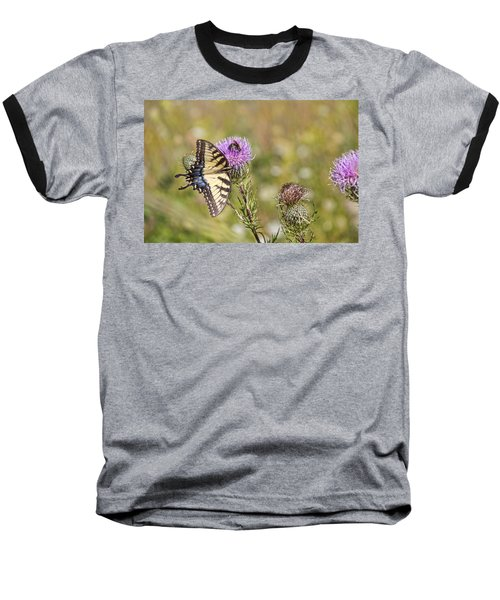 Butterfly Baseball T-Shirt by Daniel Sheldon