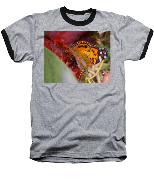 Baseball T-Shirt featuring the photograph Butterfly by Erika Weber
