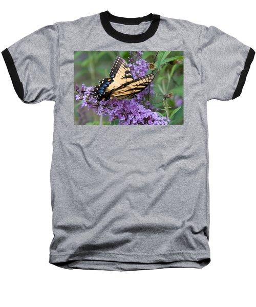 Butterfly Landing Baseball T-Shirt by Greg Graham
