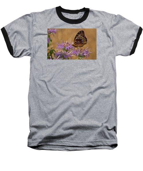 Butterfly On Bee Balm Baseball T-Shirt