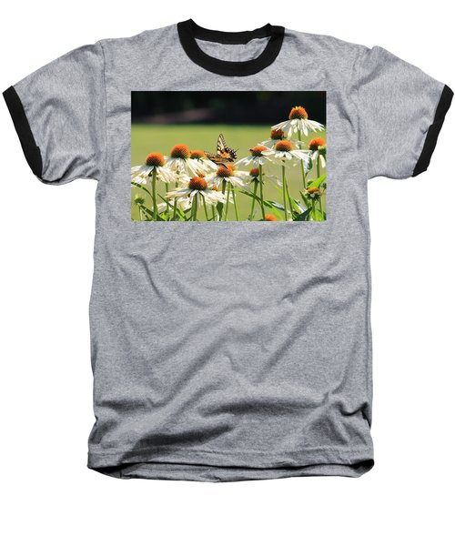 Butterfly On Echinacea Baseball T-Shirt
