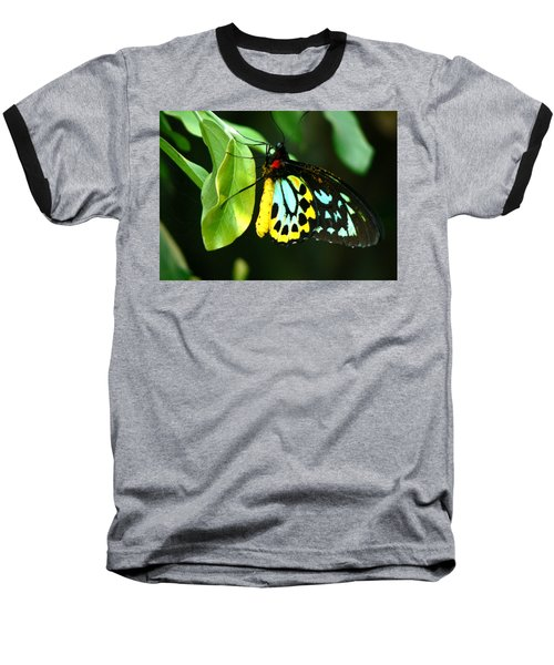 Butterfly On Leaf Baseball T-Shirt