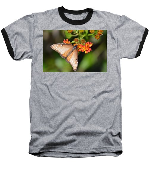 Butterfly On Mexican Flame Baseball T-Shirt by Debra Martz