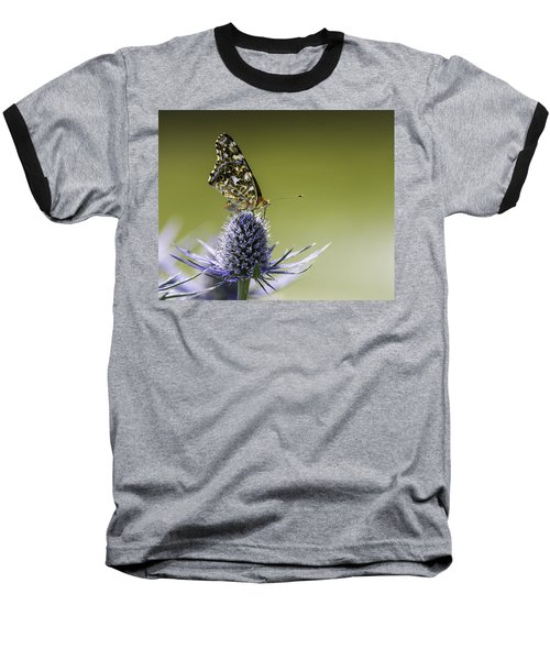 Butterfly On Thistle Baseball T-Shirt