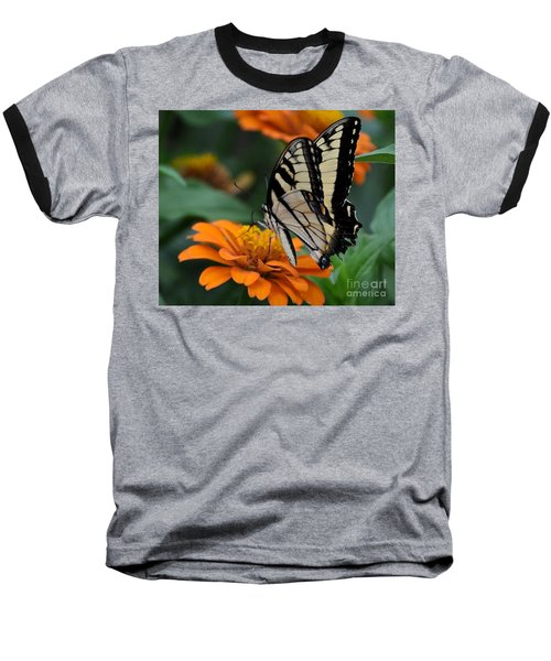 Butterfly On Zinnia Baseball T-Shirt