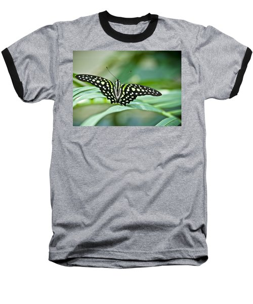 Butterfly Resting Color Baseball T-Shirt