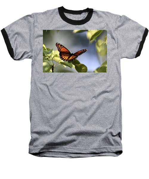 Butterfly -  Soaking Up The Sun Baseball T-Shirt by Travis Truelove