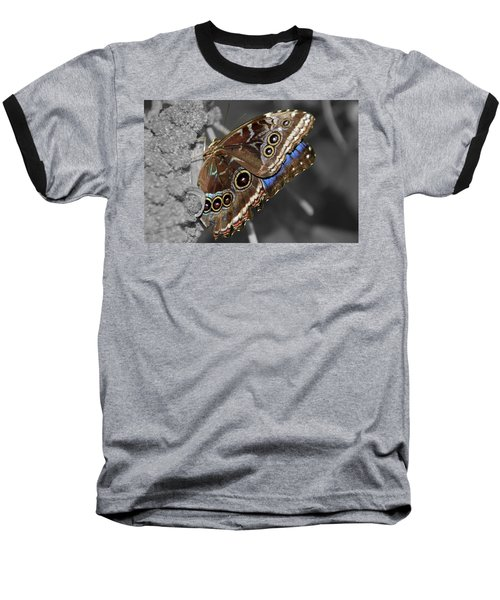 Butterfly Spot Color 1 Baseball T-Shirt