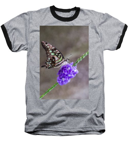 Butterfly - Tailed Jay I Baseball T-Shirt