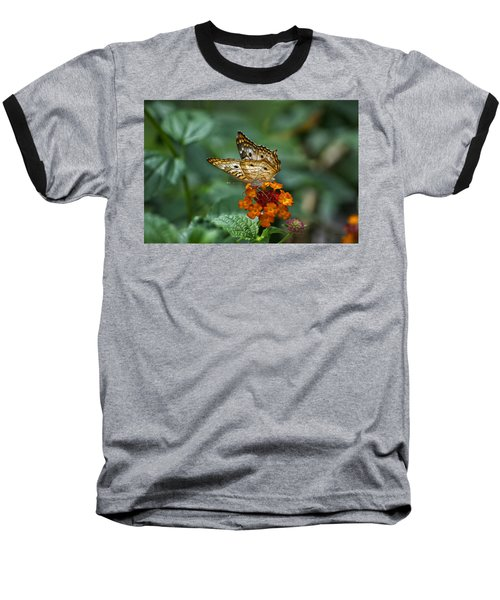 Baseball T-Shirt featuring the photograph Butterfly Wings Of Sun Light by Thomas Woolworth