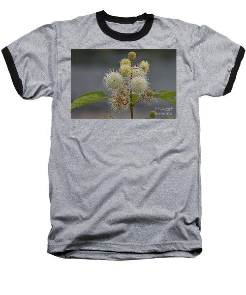 Buttonbush Baseball T-Shirt