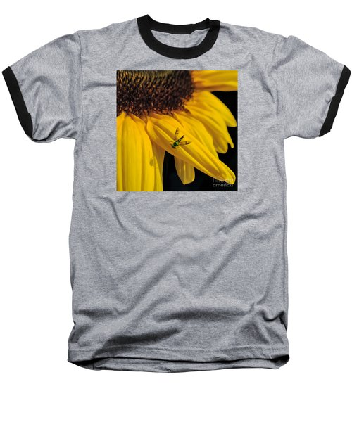 Buzz Off Baseball T-Shirt