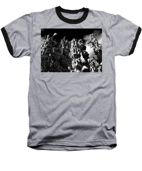 Baseball T-Shirt featuring the photograph Cactus 1 Bw by Mariusz Kula