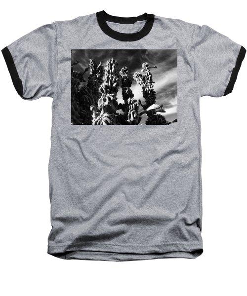 Cactus 2 Bw Baseball T-Shirt