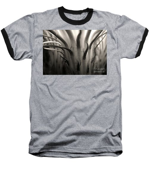 Cactus Bloom In Sepia Baseball T-Shirt