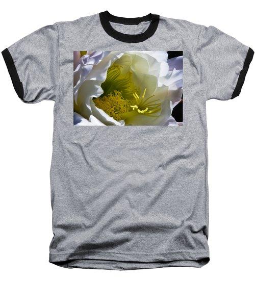 Cactus Interior Baseball T-Shirt