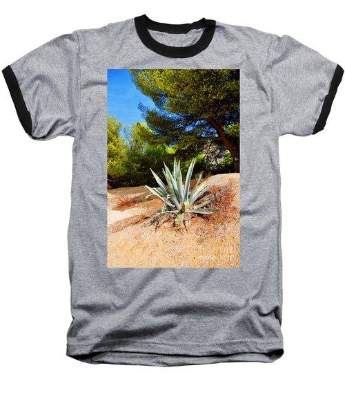 Cactus On A Rocky Coast Of French Riviera Baseball T-Shirt by Maja Sokolowska