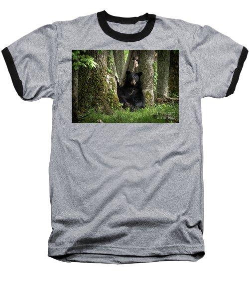 Cades Cove Bear Baseball T-Shirt