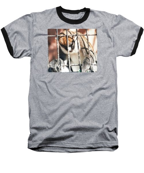 Caged But Strong Baseball T-Shirt by Belinda Lee
