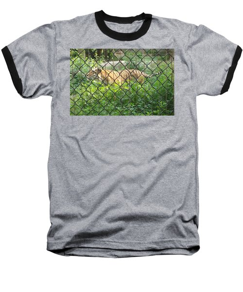 Baseball T-Shirt featuring the photograph Caged by Fortunate Findings Shirley Dickerson