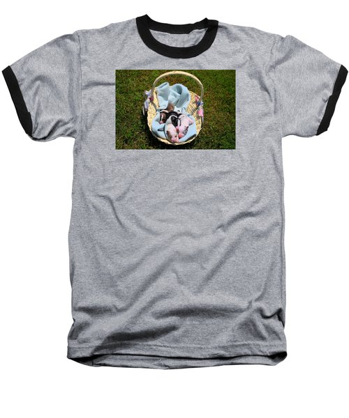 Calicos Pups At Two Days Baseball T-Shirt by Kathryn Meyer