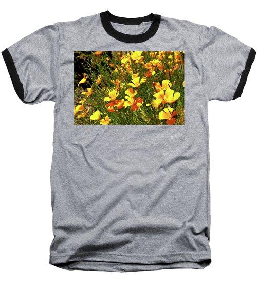 California Poppies Baseball T-Shirt by Ed  Riche