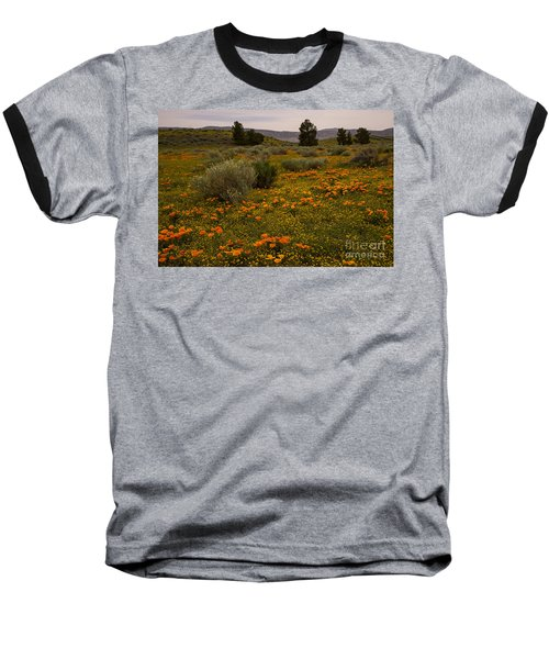 California Poppies In The Antelope Valley Baseball T-Shirt
