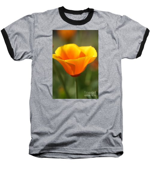 Californian Poppy Baseball T-Shirt