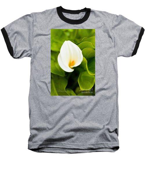 Calla Lily Plant Baseball T-Shirt