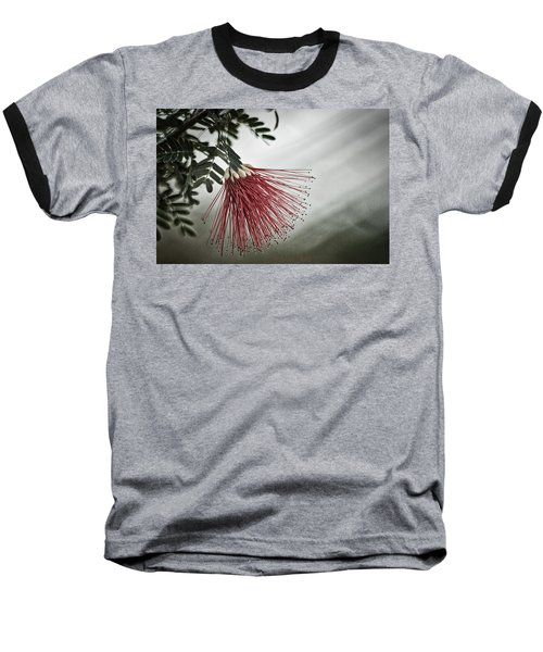 Calliandra Californica Baseball T-Shirt