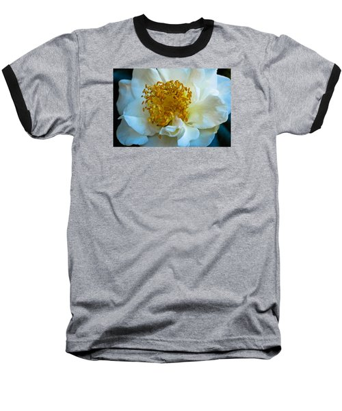 Baseball T-Shirt featuring the photograph Camellia by Julie Andel