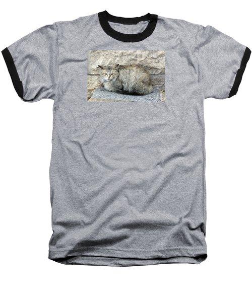 Camo Cat Baseball T-Shirt