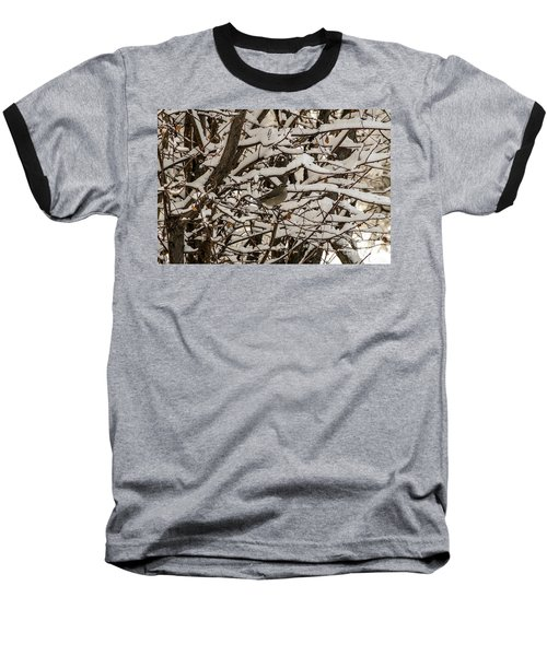 Camouflaged Thrush Baseball T-Shirt