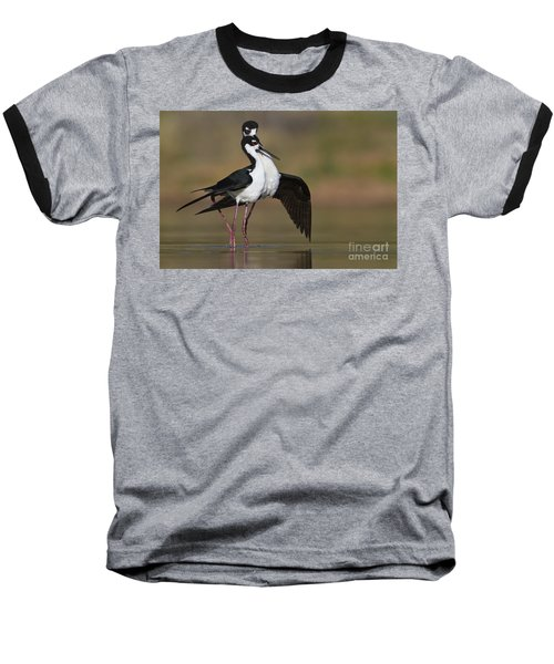 Baseball T-Shirt featuring the photograph Can I Have This Dance by Bryan Keil