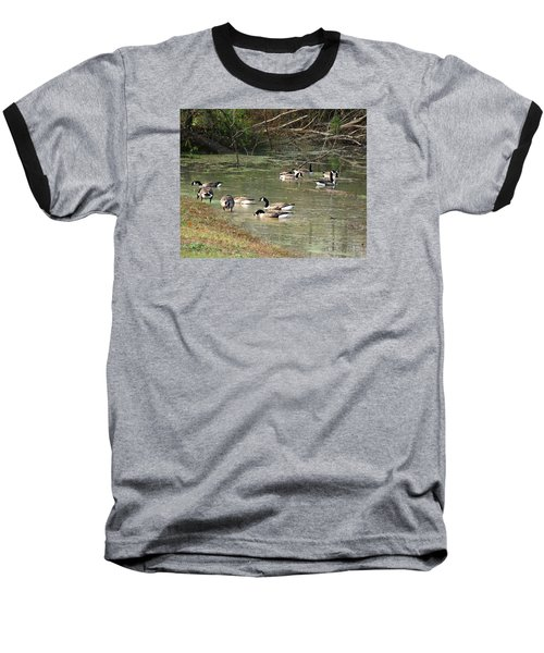 Canadian Geese Feeding In Backwaters Baseball T-Shirt by William Tanneberger