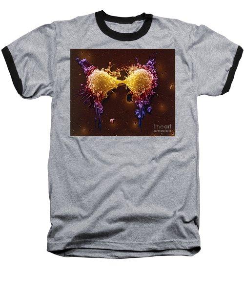 Cancer Cell Division Baseball T-Shirt