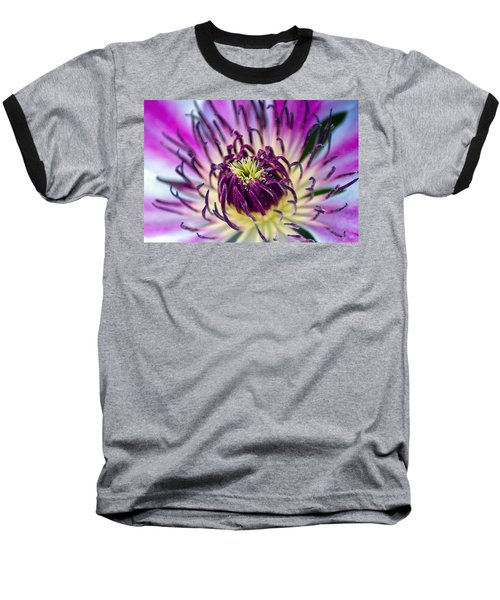 Candy Stripe Clematis Baseball T-Shirt