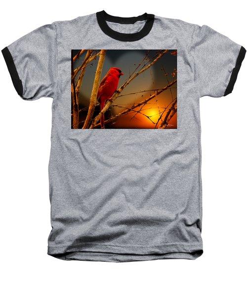 Cardinal At Sunset Valentine Baseball T-Shirt