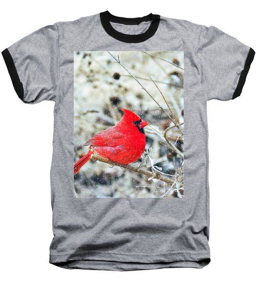 Cardinal Bird Christmas Card Baseball T-Shirt