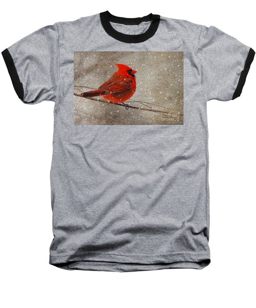 Cardinal In Snow Baseball T-Shirt by Lois Bryan