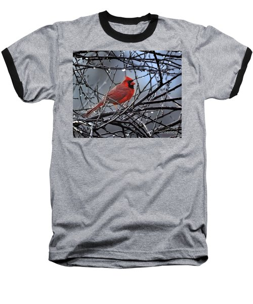 Cardinal In The Rain   Baseball T-Shirt